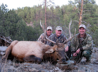 Trophy Bull Elk Hunts with SilverGrand Outfitters