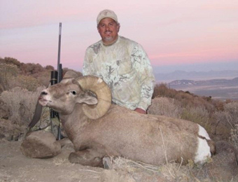 Desert and California Bighorn Sheep Hunting